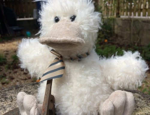Arkwright the duck returns!